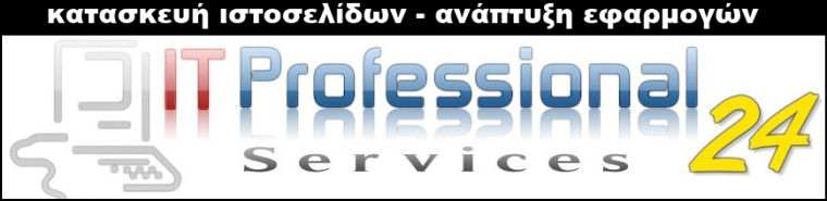 IT Professional Services 24
